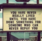 You Have Never Really Lived Until You Have...