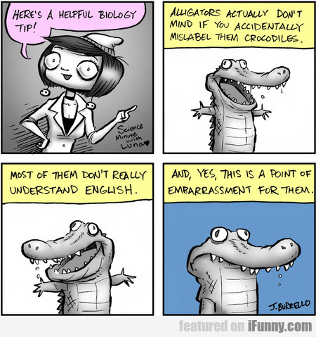 Here's A Helpful Biology Tip! Alligators Actually