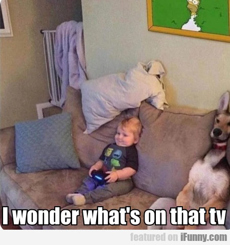 I Wonder What's On That Tv