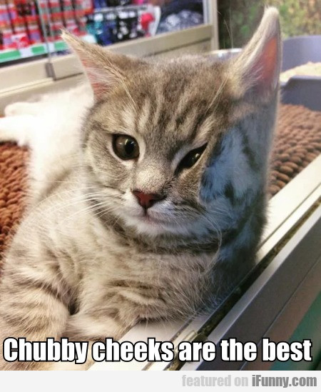 Chubby Cheeks Are The Best