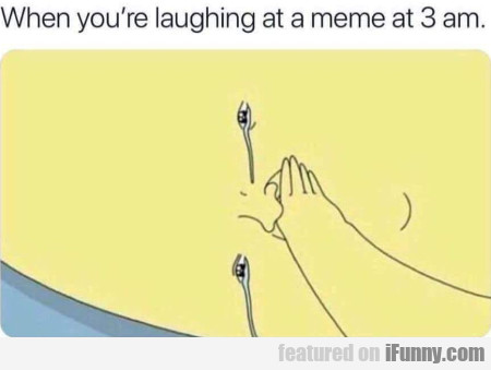 When You're Laughing At A Meme At 3 Am...