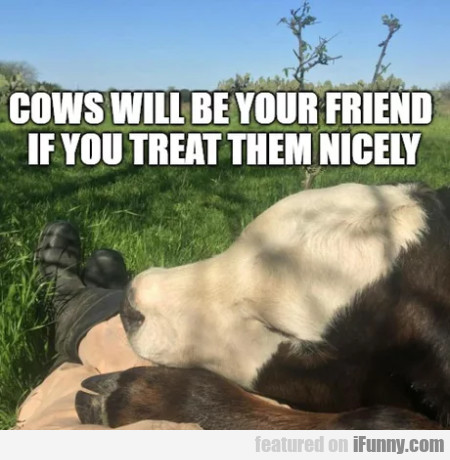 Cows Will Be Your Friend If You Treat Them Nicely