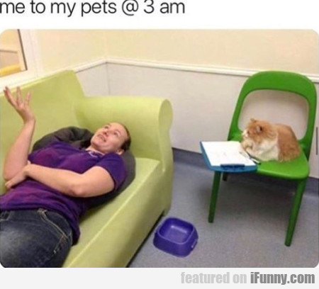 Me To My Pets @ 3 Am