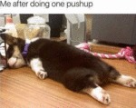 Me After Doing One Pushup