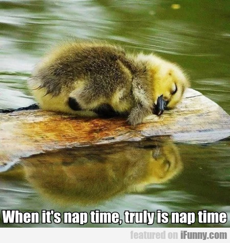 When It's Nap Time, Truly Is Nap Time