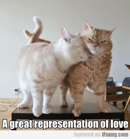A great representation of love