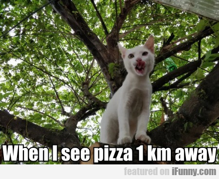 When I see pizza 1 km away