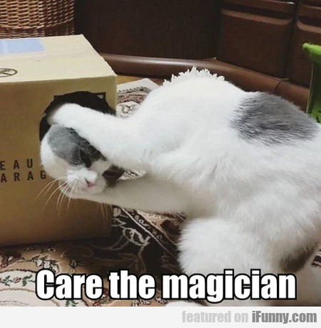 Care The Magician