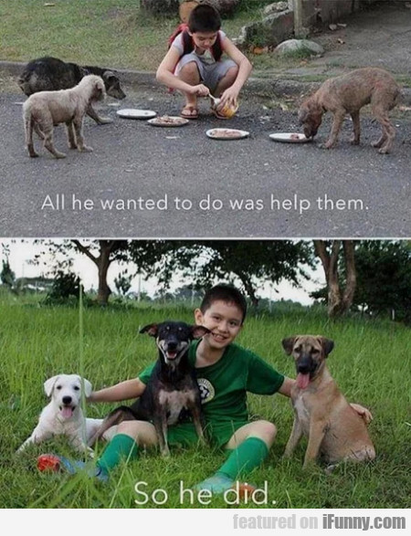 All He Wanted To Do Is Help Them - So He Did...