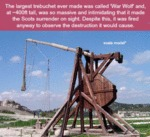 The Largest Trebuchet Ever Made Was Called...