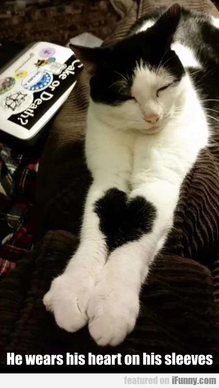 He wears his heart on his sleeves...