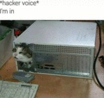Hacker Voice - I'm In...