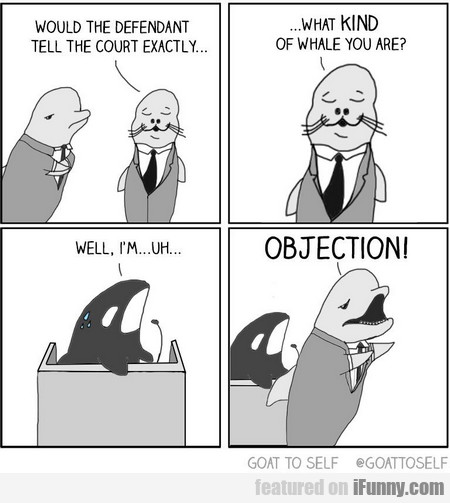 would the defendant tell the court exactly...