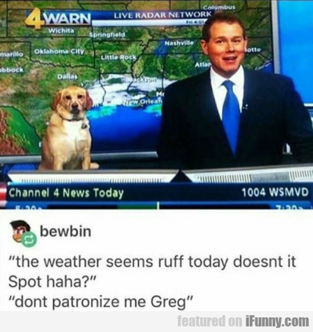The weather seems ruff today doesnt it Spot haha