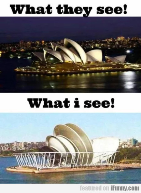 What They See - What I See
