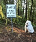 Danger - Do Not Go Beyond This Point