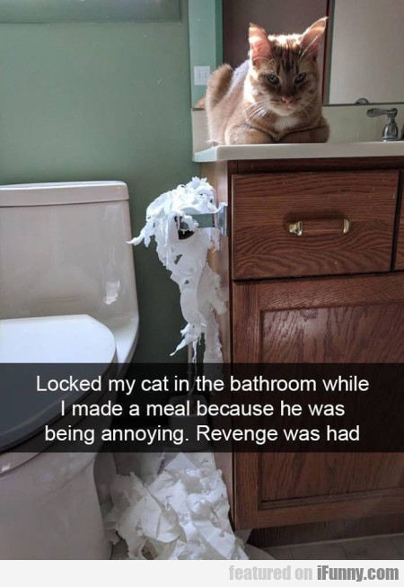 Locked my cat in the bathroom while I made...