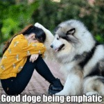 Good Doge Being Emphatic