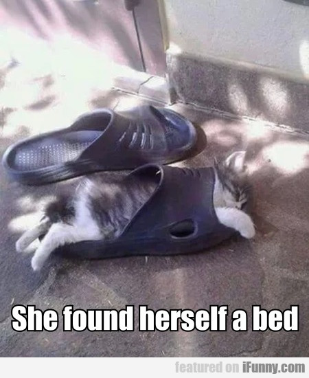 She Found Herself A Bed