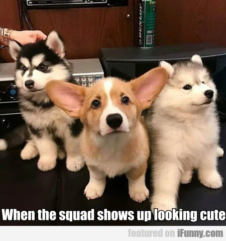 When The Squad Shows Up Looking Cute