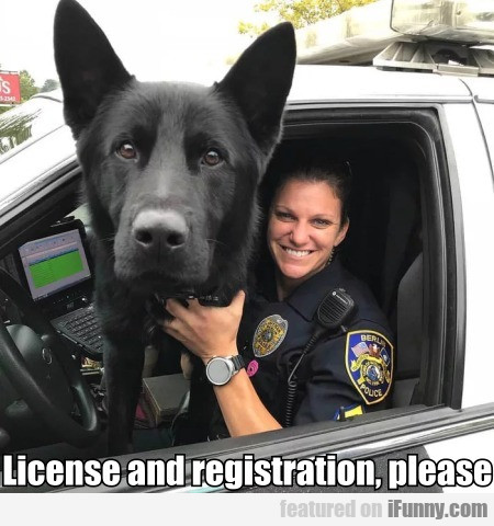 License And Registration, Please