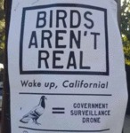 Birds Aren't Real - Wake Up California...
