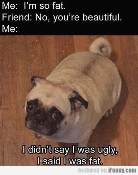 Me - I'm So Fat - Friend - No, You're Beautiful..