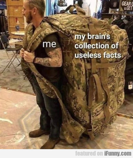 Me: My Brain's Collection Of Useless Facts...