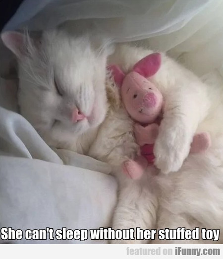She Can't Sleep Without Her Stuffed Toy