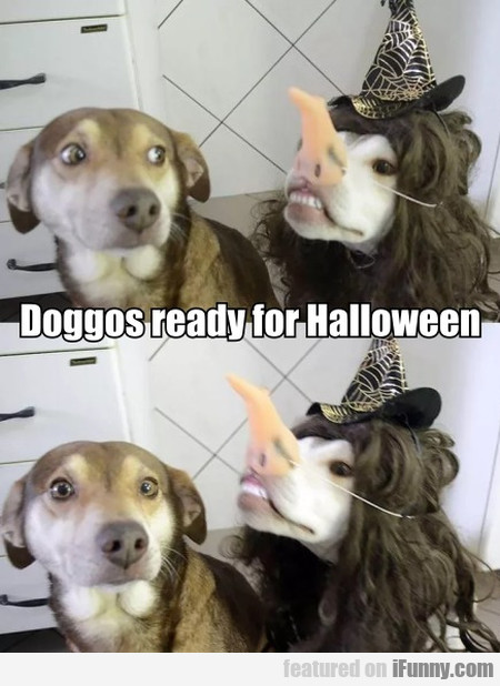 Doggos Ready For Halloween