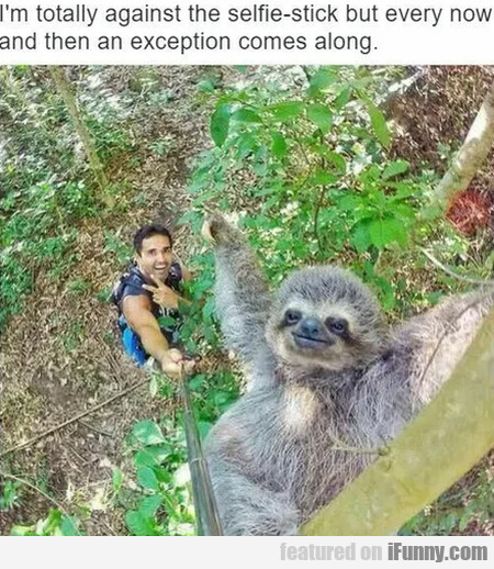 I'm Totally Against The Selfie-stick But Every...