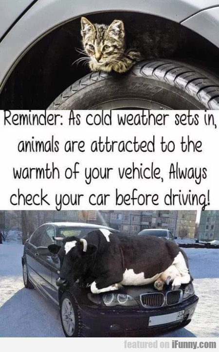 Reminder - As Cold Weather Sets In Animals...