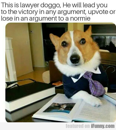 This Is Lawyer Doggo, He Will Lead You To The...