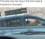 This Lady Has Her Dog In The Front Seat...