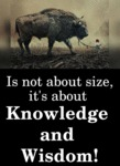 Is Not About Size, It's About Knowledge And...