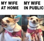 My Wife At Home - My Wife In Public