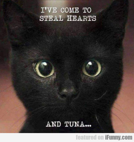 I've come to steal hearts and tuna