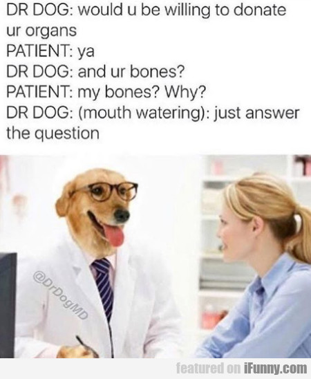 Dr Dog - Would U Be Willing To Donate Ur Organs...