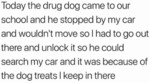 Today The Drug Dog Came To Our School And He...