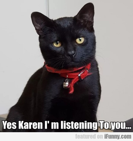 Yes Karen I' M Listening To You