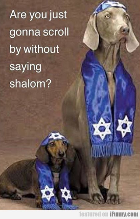 Are You Just Gonna Scroll By Without Saying Shalom