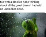 Me With A Blocked Nose Thinking About All The...