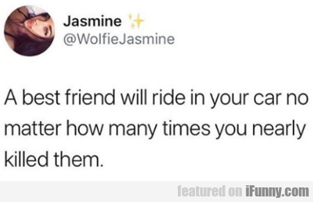 A Best Friend Will Ride In Your Car No Matter...