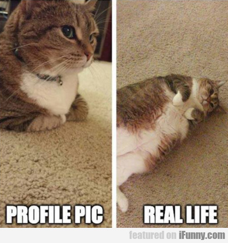 Profile Pic - Real Life