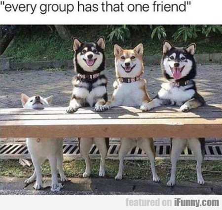 Every Group Has That One Friend