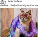 Mom, I Broke The Lamp - Why - Because Nobody...