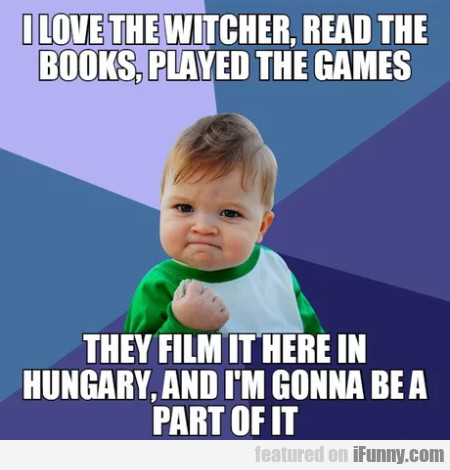 I Love The Witcher, Read The Books Played The...
