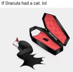 If Dracula Had A Cat Lol...