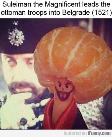 Suleiman The Magnificent Leads The Ottoman...