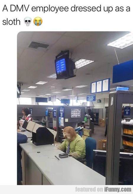 A DMV employee dressed up as a sloth